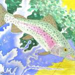 """RainbowTrout"" by FGerety"
