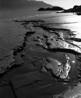 Turnagain Arm Mud I