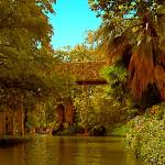 """San Antonio River"" by Corbett"
