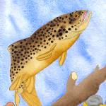 """Brown Trout"" by FGerety"