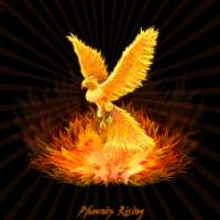 Phoenix Rising Art Prints & Posters by Leah McNeir