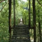 """""""Trixie Bridge"""" by chrisallenz"""