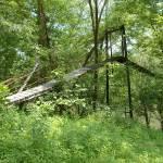 """Trixie Bridge Side"" by chrisallenz"