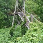 """Appalachian Swinging Bridge BC"" by chrisallenz"