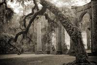Old Sheldon Church in Beaufort SC