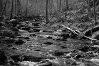 Stream of rocks 2 BW