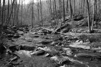 stream of rocks 3 bw