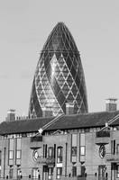 Gherkin black and white