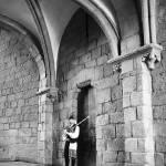 """Santiago de Compostela-46"" by julianl"