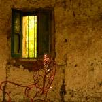 """Old window"" by duilio"