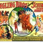 """Ringling Bros presenting Schuman"
