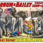 """Barnum & Bailey, The Greatest Show on Earth"" by Shortrunusa"
