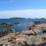 """McClellan Park, Rocks and Sea"" by woodlarkny"