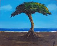 Tree in Beach / Arbol en Playa