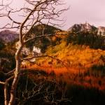 """""""Mt Evergreen"""" by Tritch-Pix"""