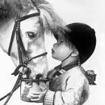 """""""Girl Feeding Horse"""" by slkostura"""