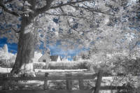 Dream Cottage - Infrared
