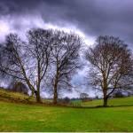 """""""Ashridge Boundary Trail"""" by johnedwardmichael1"""