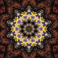Indian Corn Kaleidoscope Art 1