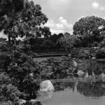 """""""Bridge"""" by alexiscampos"""