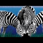 """Blue Oasis Zebras"" by Art_By_Design_Studio"