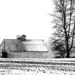 """_MG_7295 - Barn in Winter Snowstorm - Indiana"" by whayes39"