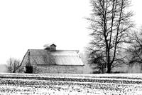 _MG_7295 - Barn in Winter Snowstorm - Indiana
