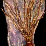 """Pussywillows In A Wooden Vase"" by monicavanzant"