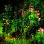 """Giverny Spirit X"" by Woodsman"