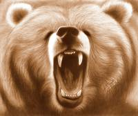 Sepia Grizzly