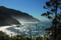 Misty Coast at Heceta Head
