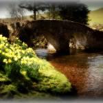 """little Bridge"" by milesphotography"