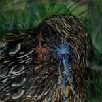 """Vision Quest"" by spiritedmb"
