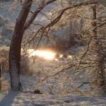 """Winter Sun"" by AdirondackPhotoDesigns"