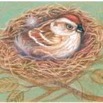 """""""For His Eye Is On the Sparrow"""" by carolinecards"""