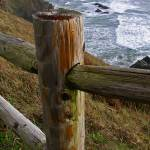 """PICT0088 OCEAN AT ECOLA ST PK"" by KEITHMOUL"