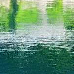 """""""reflection of trees in surface of rippling water"""" by nathangriffith"""