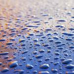 """rain drops on car hood"" by nathangriffith"