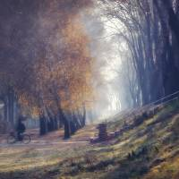 Misty Autumn Morning Art Prints & Posters by Tanjica Perovic