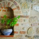 """Clay flowerpot"" by AlexandruVita"