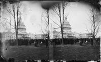 Inauguration of President Ulysses S. Grant by Brad