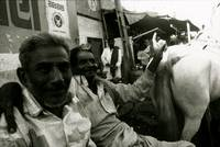 Men and a Horse in Bhuj