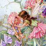 """The Sweet Pea Fairy"" by DevereauxGallery"
