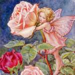 """The Rose Fairy"" by DevereauxGallery"