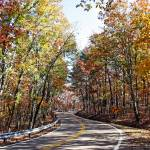 """Autumn On Jones Gap Road"" by Lorraine_Sommer"
