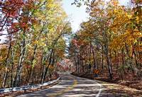 Autumn On Jones Gap Road