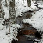 """Fern Creek Winter"" by Lorraine_Sommer"