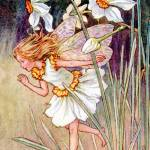 """The Narcissus Fairy"" by DevereauxGallery"