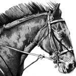 """""""Racer..."""" by daunesheri"""