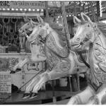 """carousel"" by geemurray"